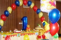 1st Birthday Party - Winnie the Pooh Theme